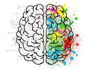 Cerveau creatif